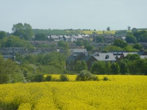 Photo across fields towards north of village. Yellow fields and houses hidden in trees
