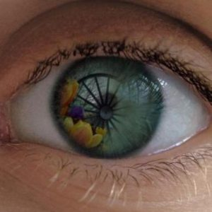 photograph of human eye with Pit wheel reflection, a manipulated photograph using software to create an effect