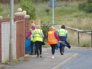 Photograph of volunteer litter pickers near the Limes