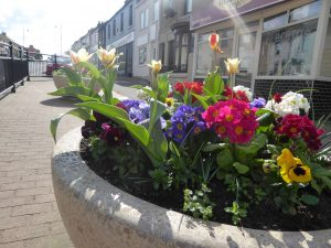 Photo of planter in the front street