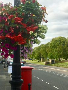 Photograph of hanging basket in Front street