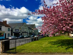 Photograph of front street in spring taken from footpath in church grounds