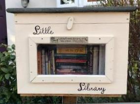 Close up photo of the Coxhoe Little Library may 2020