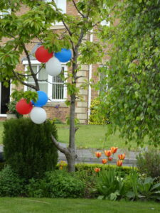 Photograph of red white and blue balloons and tulips