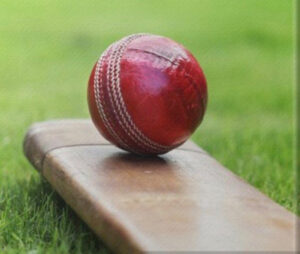 Photograph of cricket bat and cricket ball stock photograph
