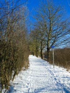 picture of a footpath in the snow
